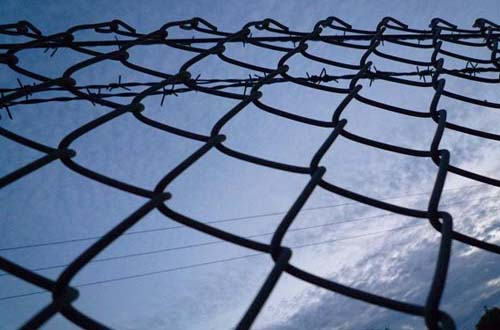 free wire textures